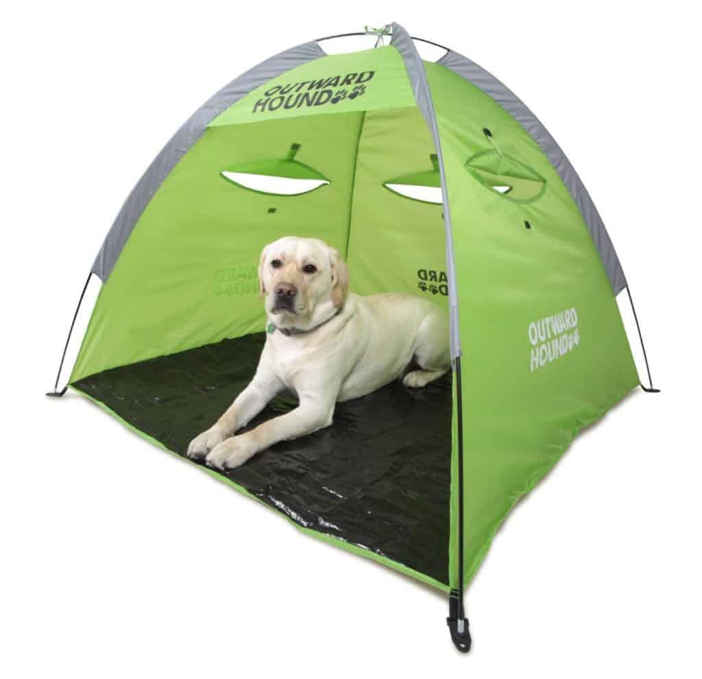 casa de campaña perros