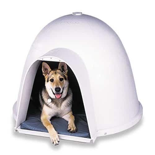casa de perro moderna