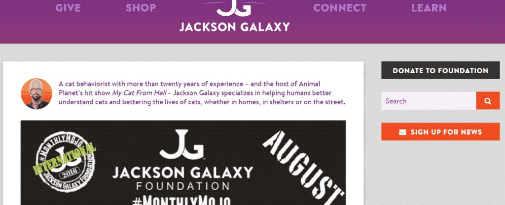 Jackson Galaxy Blog