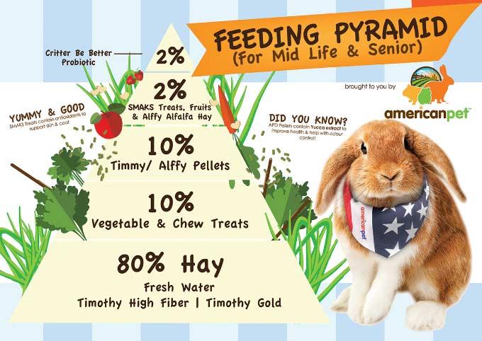 Pirámide Alimentacion Cuyo