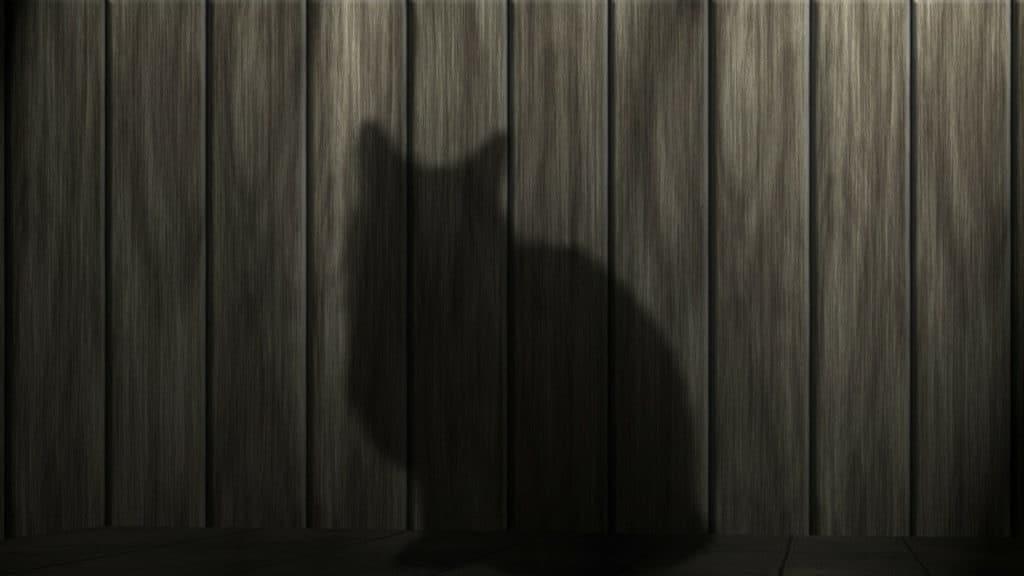 El Origen del Gato