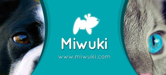 Miwuki: Nueva Aplicación que Cambiará la Vida de las Mascotas en Abandono