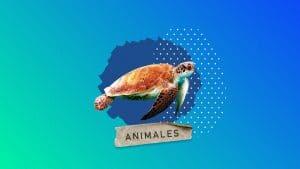 200 Animales en Extinción en México